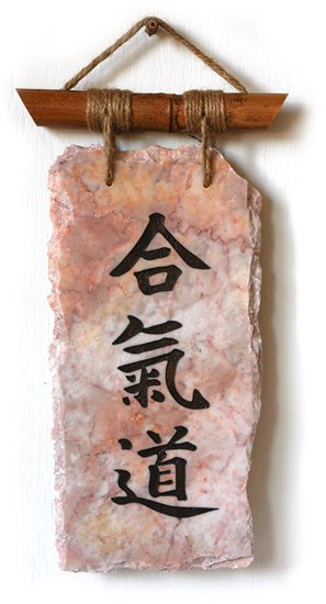 Partenaire Aikido